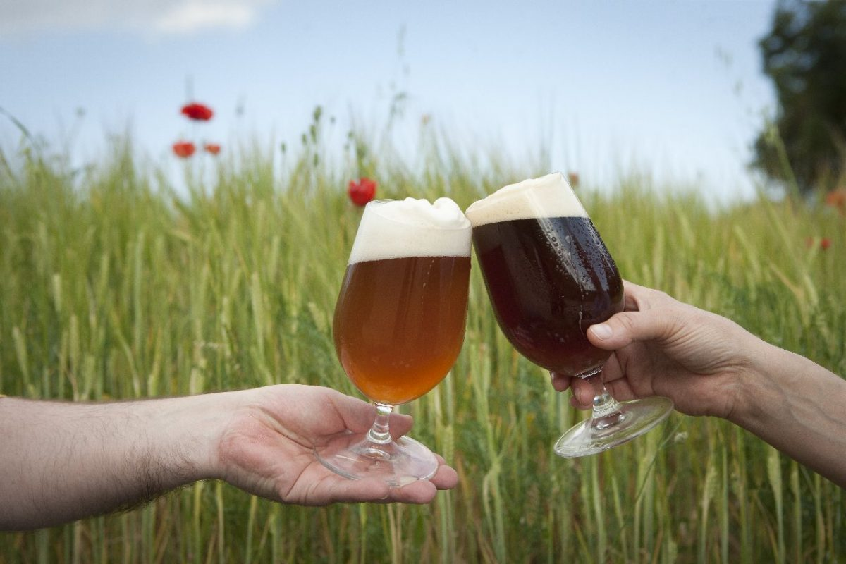 Brindant cervesa artesana Ninkasi ecològica gluten-free ecofeminista